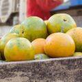 System ERP dla branży spożywczej – główne korzyści